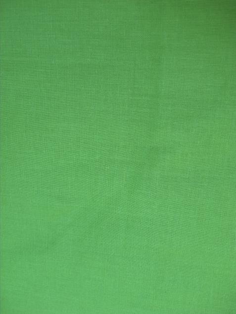 Plátno Ideal zelené